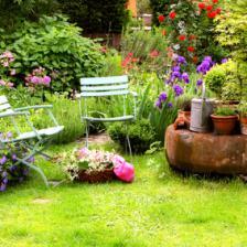 Summer in the garden, all the tasks