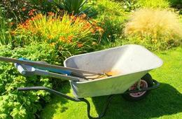 jardinage septembre