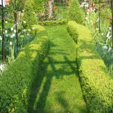 The complete guide to spending March in the garden
