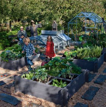 The Children's vegetable patch