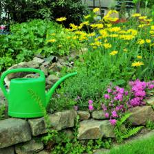 The complete guide to spending May in the garden