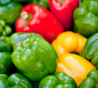 Bell pepper, a carnival of colors