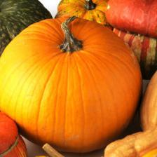 Pumpkin health benefits and therapeutic value