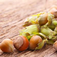 Hazelnut health benefits and therapeutic value