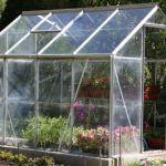 plants winter shelter