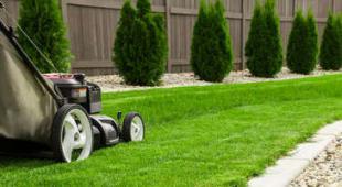 créer semis gazon pelouse