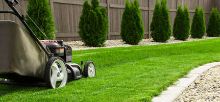 Prepare or renew your lawn in 3 steps