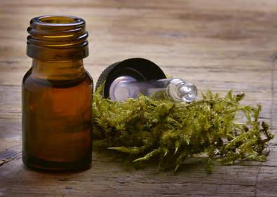 Lichen health benefits and therapeutic value