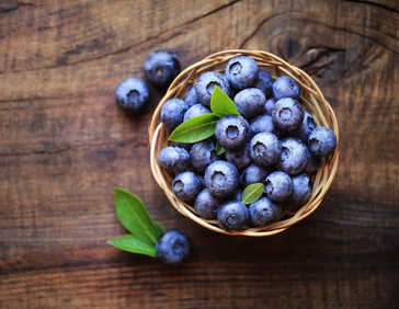 Bilberry health benefits and therapeutic value
