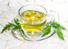 herbal tea common vervain health benefits