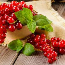 Currant, red currant health benefits and therapeutic value