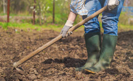 Ace your eco-friendly gardening practices