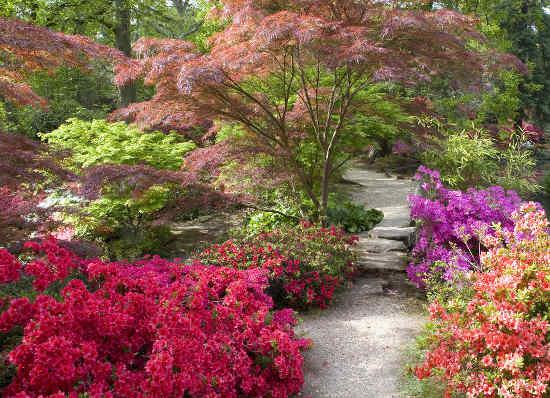 Japanese inspiration for the garden