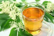 elder herbal tea