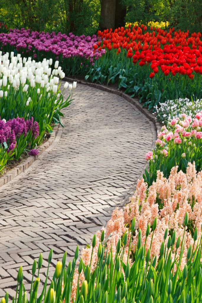 A stone brick pathway with spring bulbs show the garden tasks to be done in March.