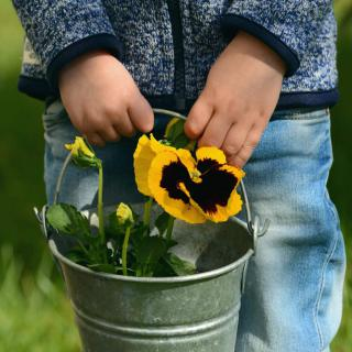 A child carries a pail with a pansy in it, ready to start March gardening tasks.