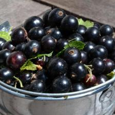 Black currant health benefits and therapeutic value