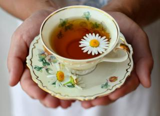 A cup of chamomile tea in open hands.