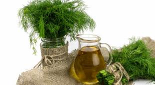 Benefits of dill for the body