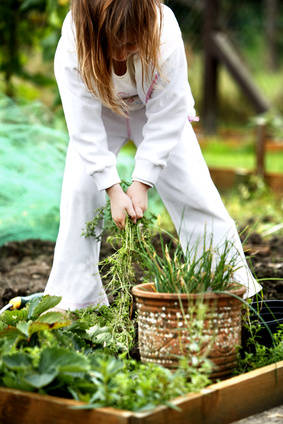 Natural and organic weeding, it works!