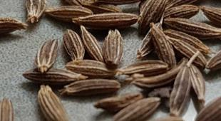 Cumin seeds full of benefits