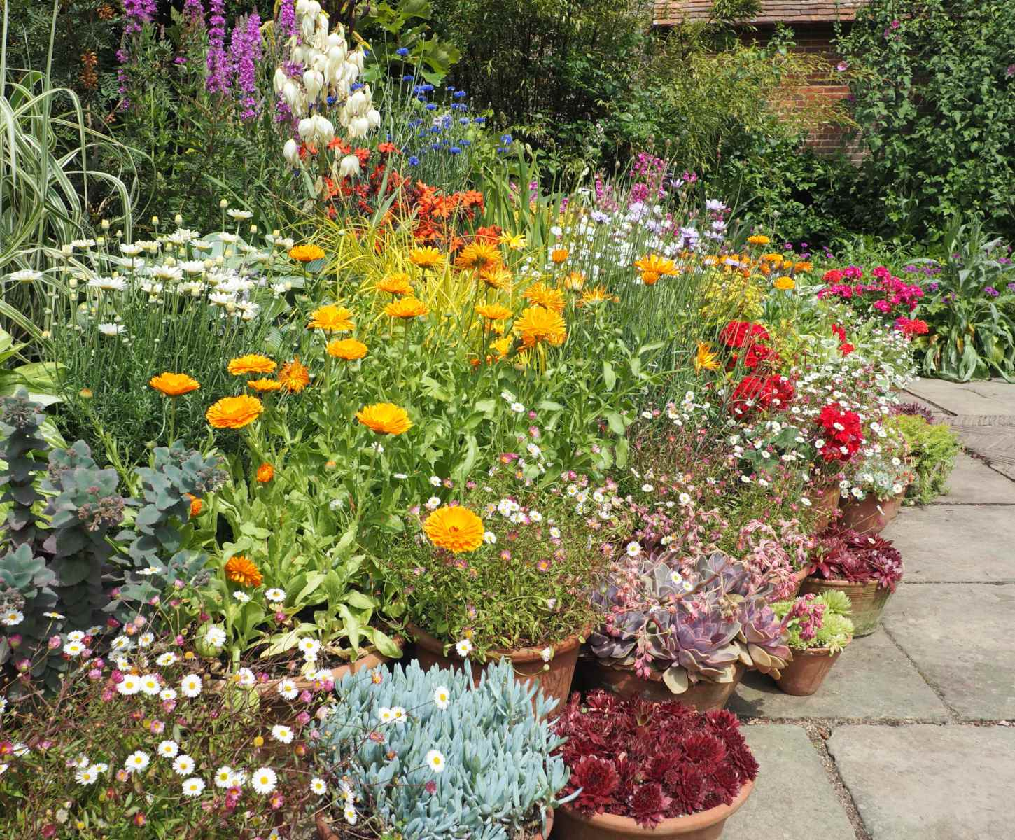 A flower-filled garden bed in July