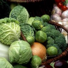 Cabbage, how to grow it and different varieties