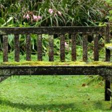 seaons-garden