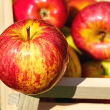 Apple health benefits and therapeutic value