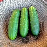 Three small cucumbers in a wicker plate.
