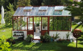 An iron and glass greenhouse in part shade in a garden.
