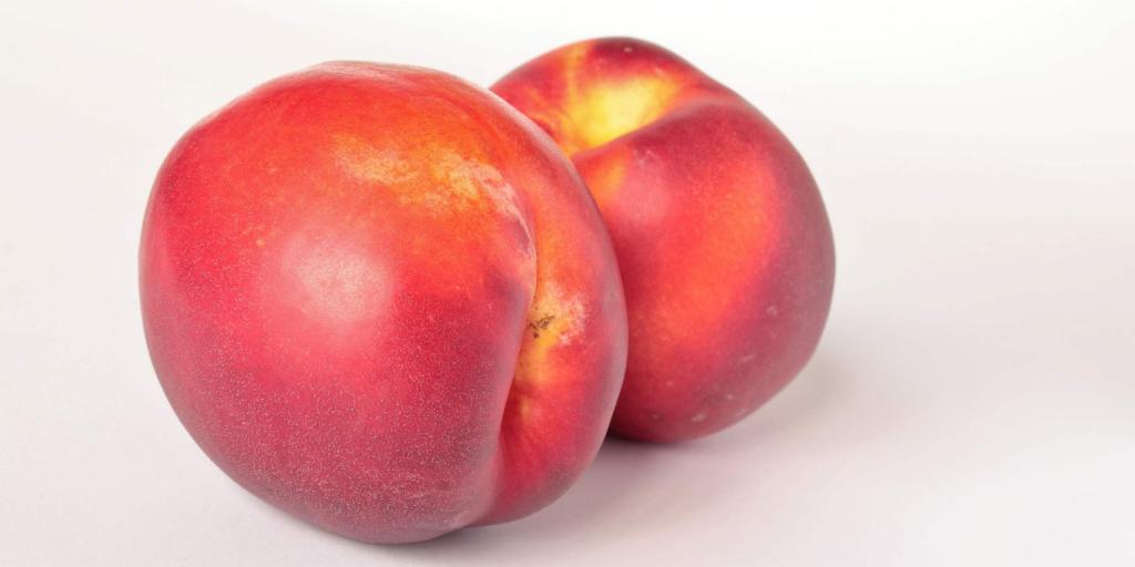 Two nectarines with a white background