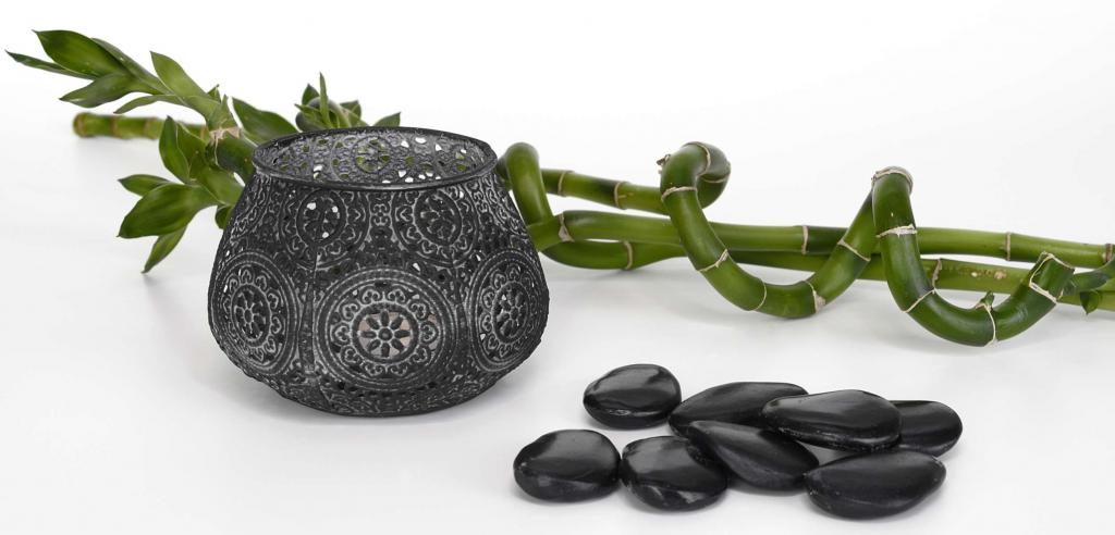 Lucky bamboo and teapot with stones