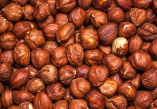 Hazelnuts harvested from purple hazel are identical to regular hazel.