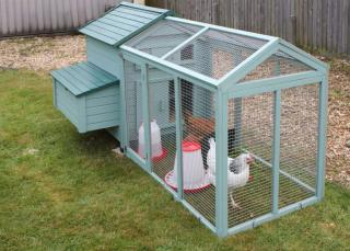 Chickens in a garden coop on a green lawn.