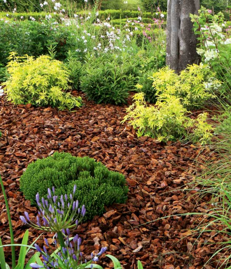 Mulch, it protects and decorates your flower beds