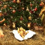 Nativity scene with Mary, Jesus and Joseph on straw under a live Christmas tree.