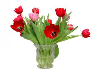 Bouquet of red and pink tulips in a clear vase.