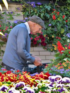 An elderly person can still garden thanks to a raised garden.
