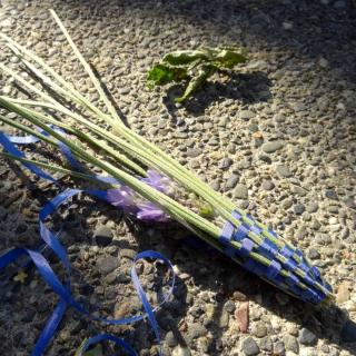 How to make lavender wands