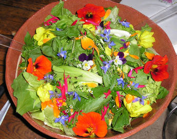 Grow flowers for food!