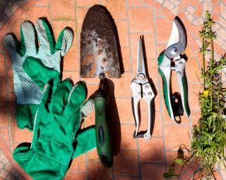 Gloves, a trowel, shears and a few picked weeds show all the tasks to get done in the garden in April.