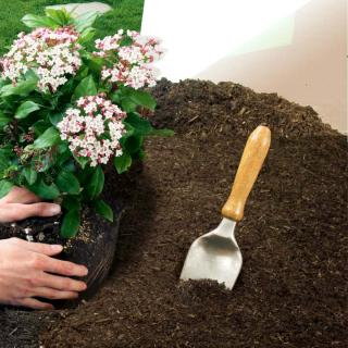 Planting a flower with soil mix or compost makes a difference.
