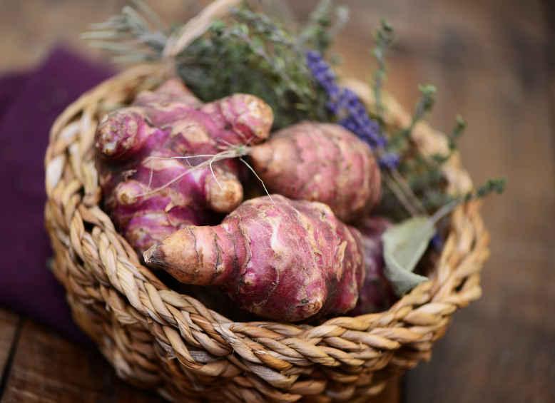 Jerusalem artichoke, easy growing, unique taste