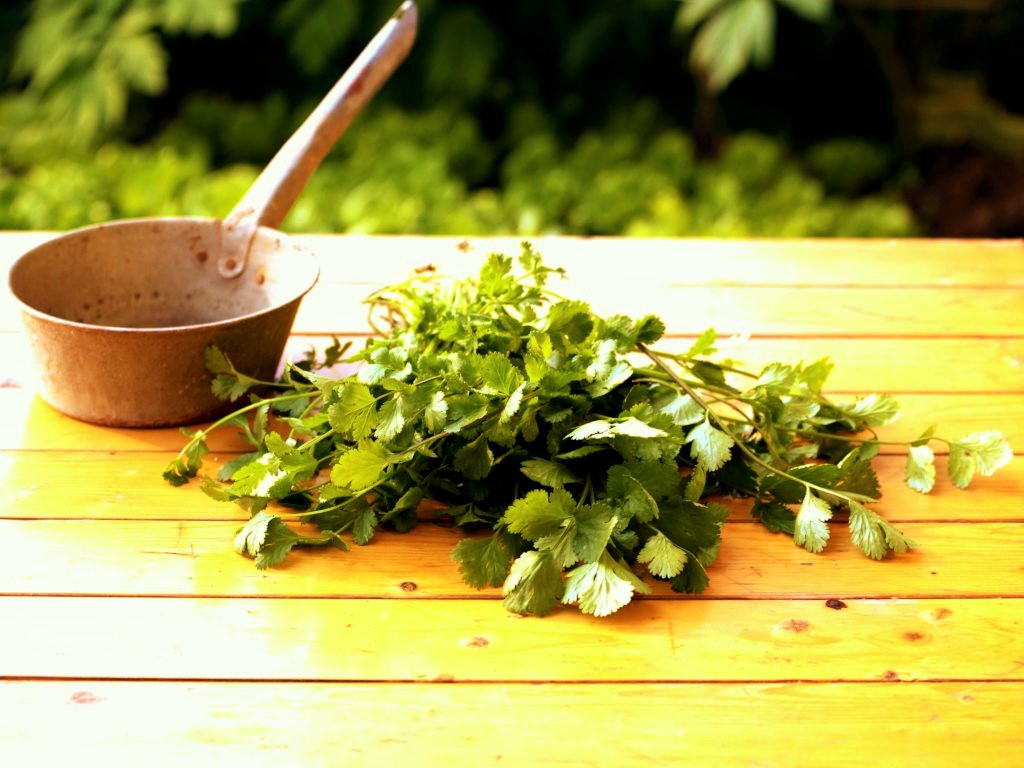 Coriander chopped up on a table with a small kettle used to prepare it for its health benefits.