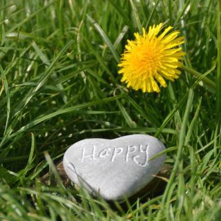 "Dandelion in grass with heart-shaped stone marked with ""happy""."