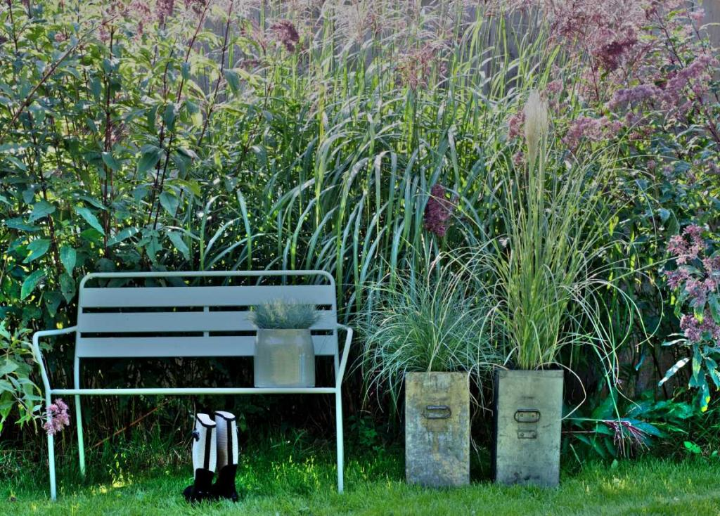 Bench with grasses in a landscaped garden