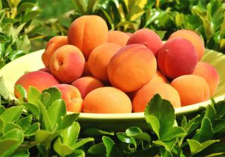 Health benefits of apricot are highest when eaten raw.