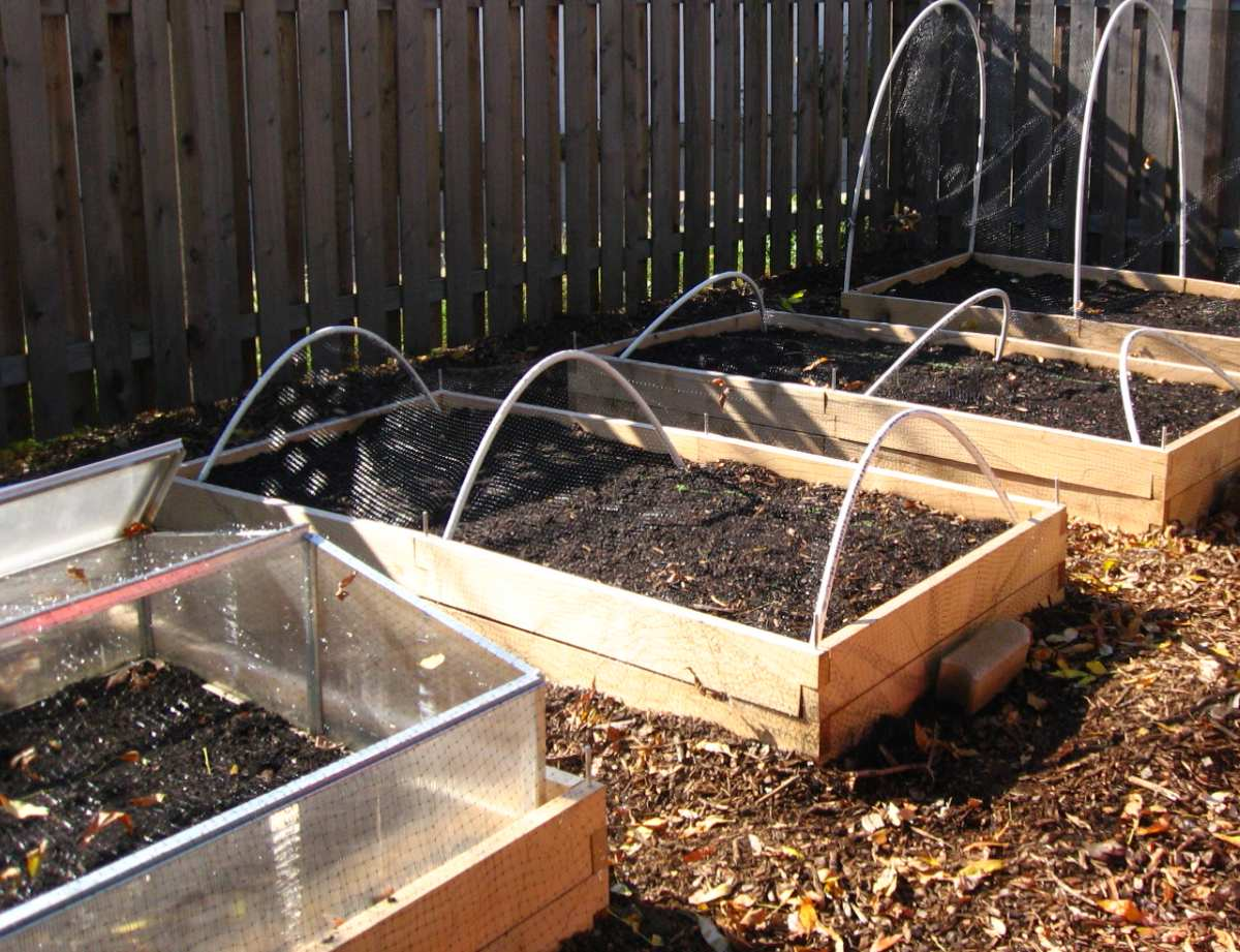 Beds prepared to cover seedlings and sowing