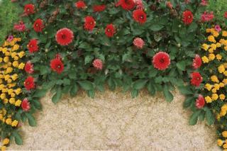 Flax mulch